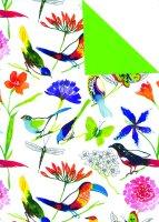 Geschenkpapier Secare Rolle Manaus x VT grün mg 70...