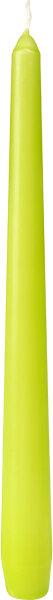 Leuchterkerzen Kiwi 250 x Ø 22mm 7,5h Brenndauer - 100 Stk