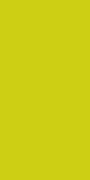 Duni Zelltuch Servietten Kiwi 33 x 33 cm -